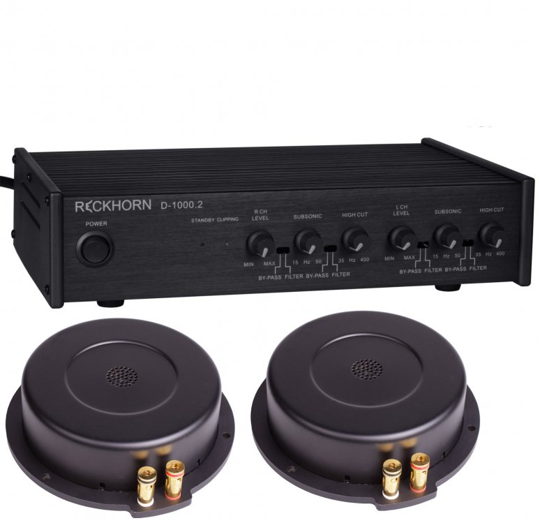 reckhorn d 1000 2 digitaler stereo oder 2 x mono subwoofer. Black Bedroom Furniture Sets. Home Design Ideas